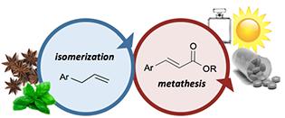 Olefin metathesis review